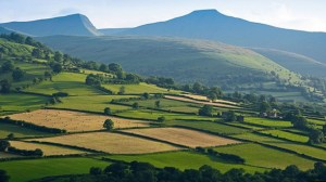 Countryside, Mid Wales. (Courtesy