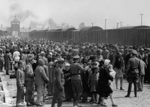 """Selection"" of Hungarian Jews for either work or the gas chambers, Auschwitz II (Birkenau), May or June 1944 (Courtesy Wikimedia Commons)"