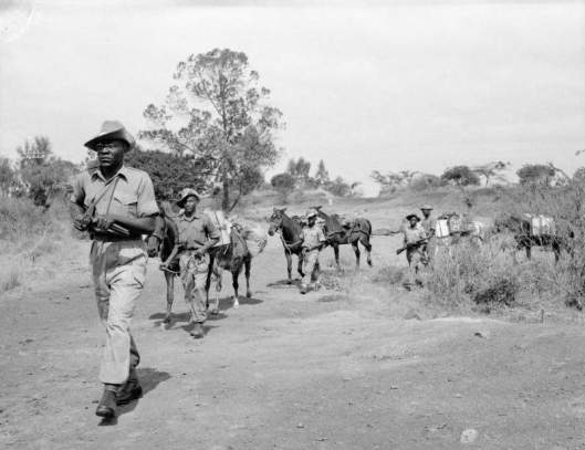 A detachment of the King's African Rifles, on patrol against Mau Mau forces, ca. 1952-56 (courtesy Imperial War Museum, London, via Wikimedia Commons; public domain)